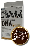 DNA My Dog Breed Identification Test